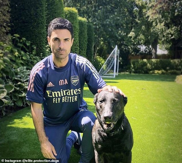 Mikel Arteta and his new best friend, via Elite Protection Dogs