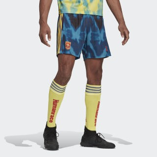 Adidas Humanrace Arsenal shorts and socks